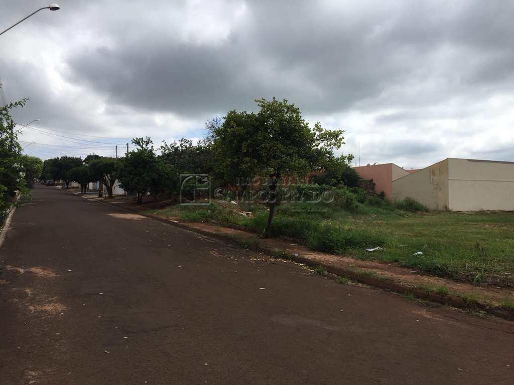 Terreno em Jaú, bairro Jardim Novo Horizonte