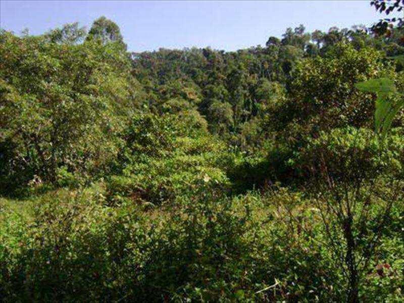 Terreno em Itanhaém, no bairro Rural