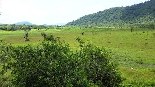 Fazenda, código 2129 em Itanhaém, bairro Jardim Mambu