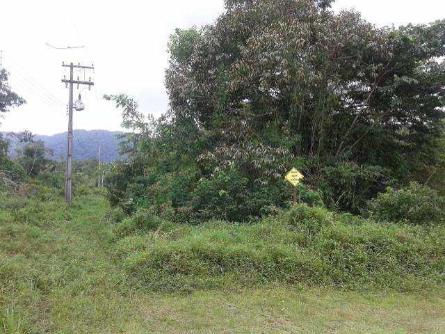 Loteamento Rural em Itanhaém, no bairro Rural