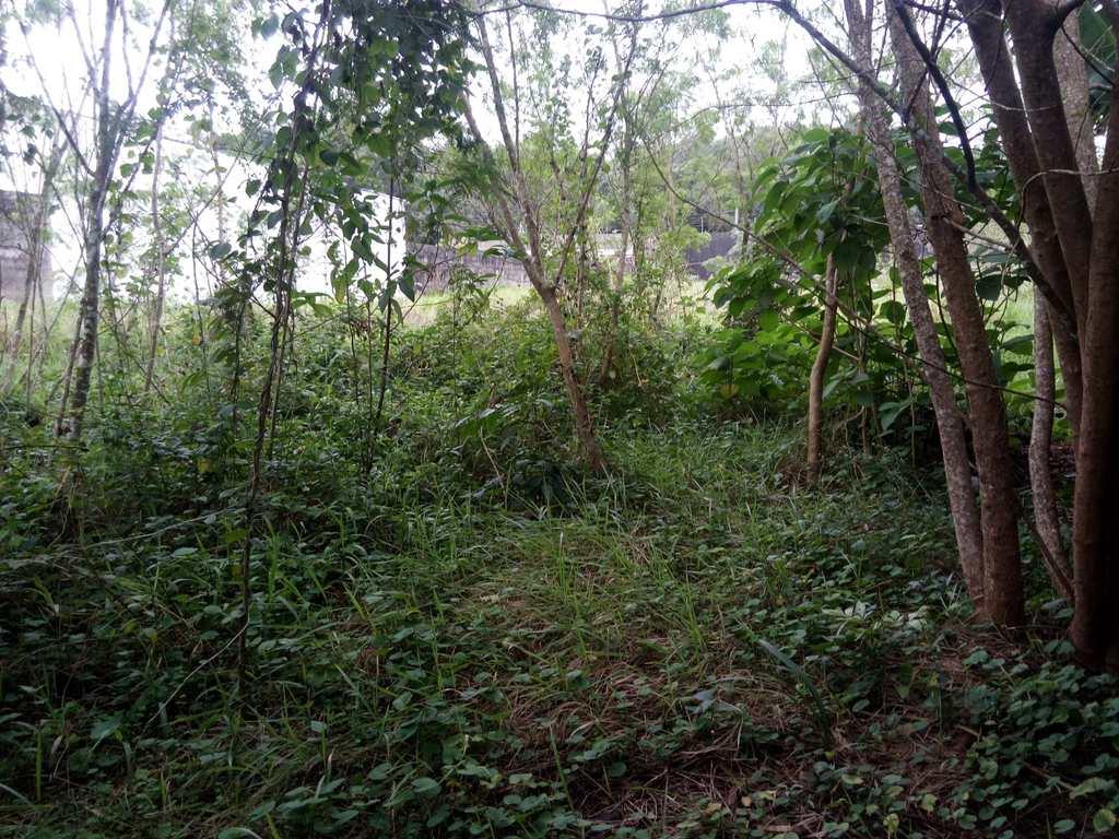Terreno em Itanhaém, no bairro Parque Novaro