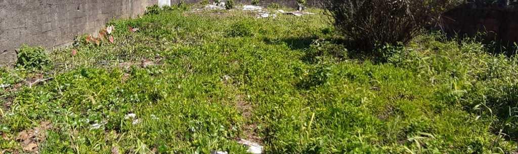 Terreno em Itanhaém, no bairro Raul Cury