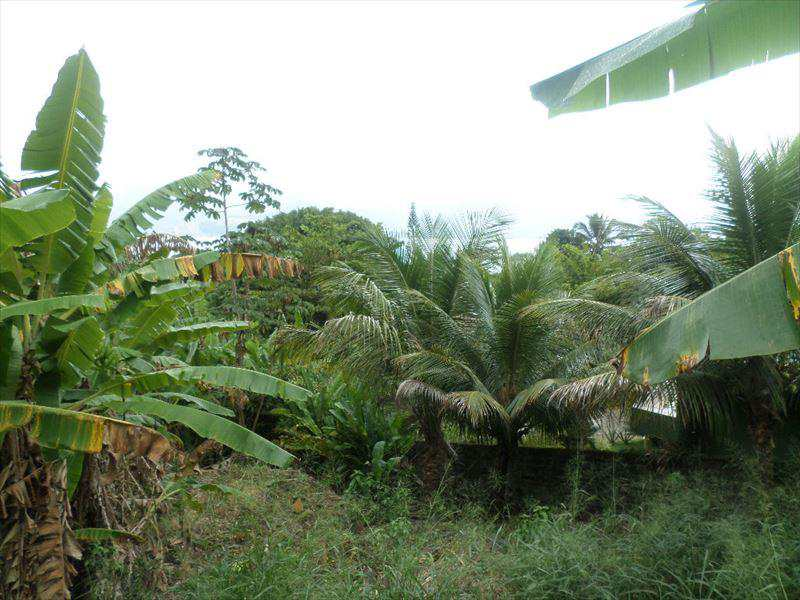 Terreno em Ilhabela, no bairro Praia Grande