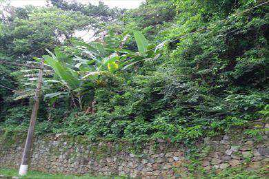 Terreno, código 1167 em Ilhabela, bairro Feiticeira