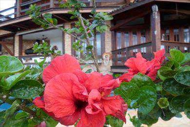 Casa, código 973 em Ilhabela, bairro Engenho D'água