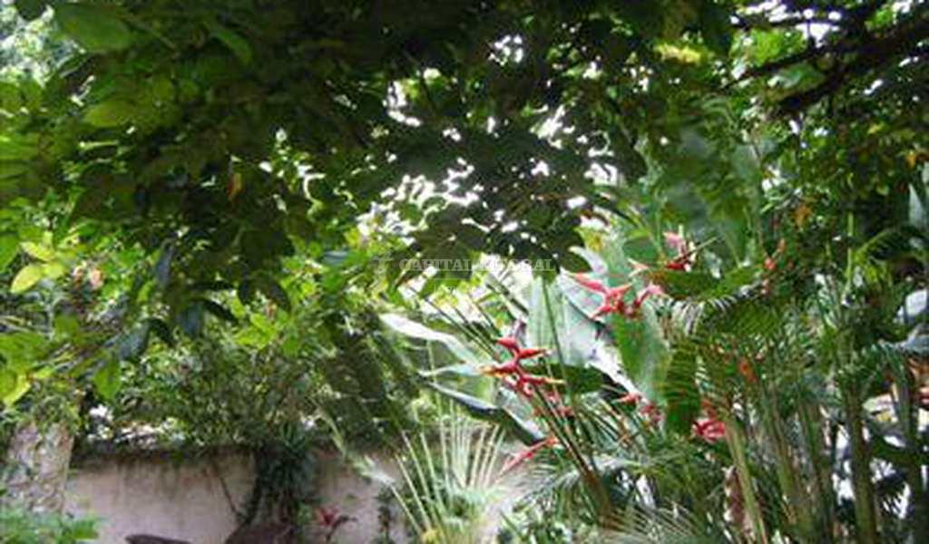 Casa em Ilhabela, bairro Praia Saco da Capela