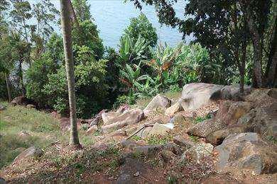 Terreno, código 294 em Ilhabela, bairro Pacoíba