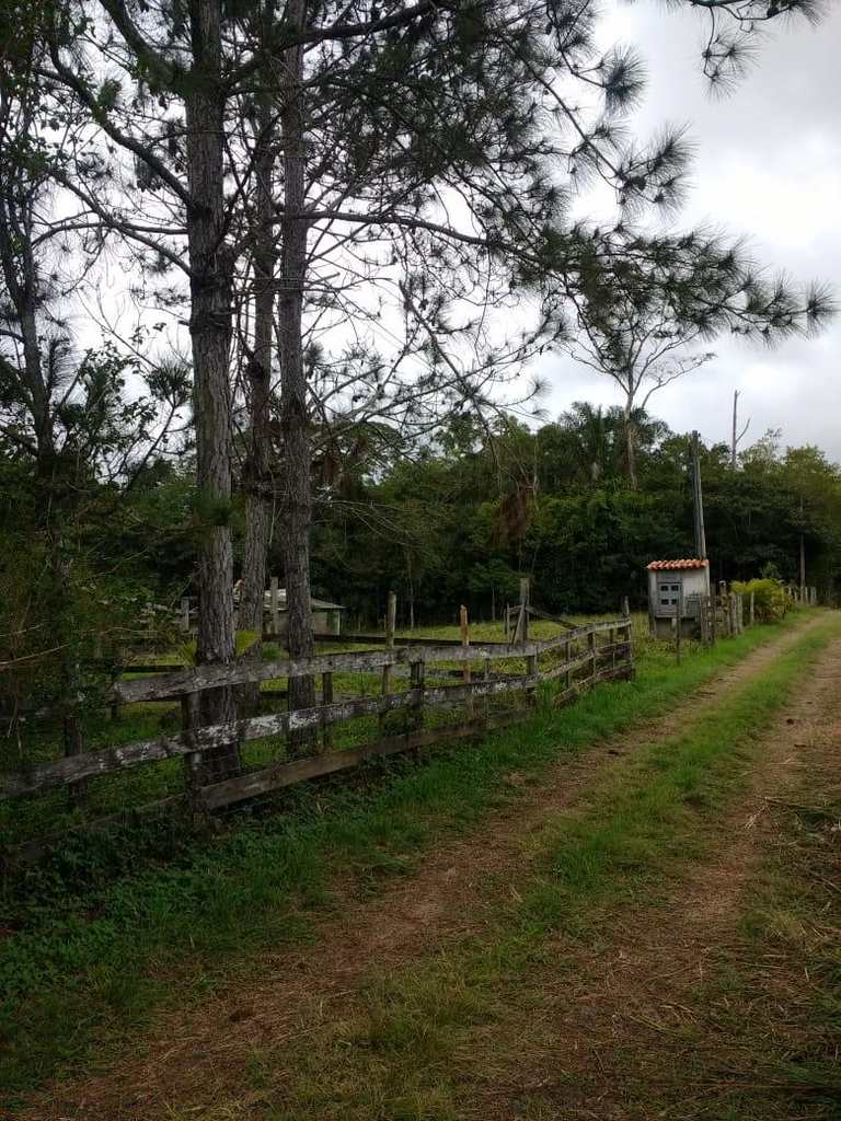 Sítio em Iguape, no bairro Pinheirinho