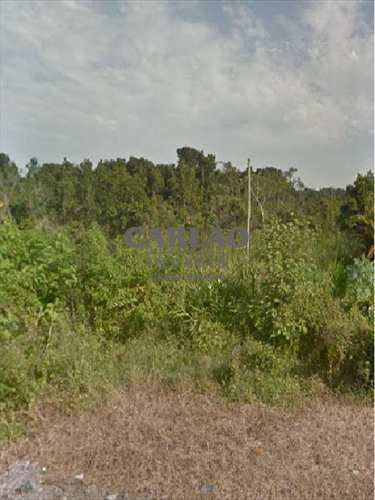 Terreno, código 329101 em Mongaguá, bairro Balneário Itaguai