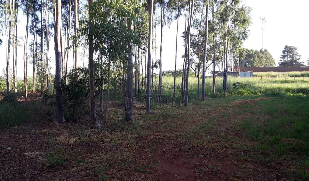 Chácara em Jaboticabal, bairro Jardim Independência
