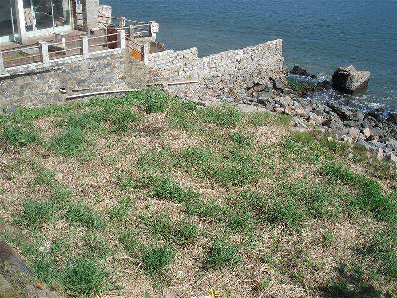 Terreno Comercial em São Vicente, no bairro Ilha Porchat