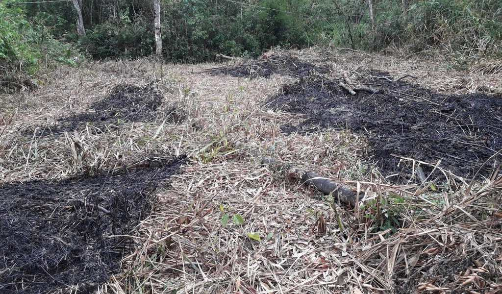 Terreno Rural em Mogi das Cruzes, bairro Cézar de Souza