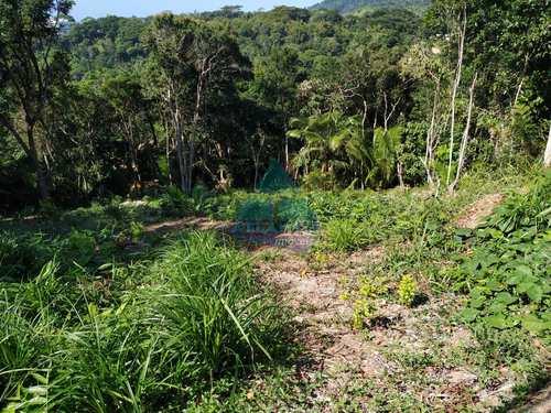 Terreno, código 1110 em Ubatuba, bairro Praia do Pulso