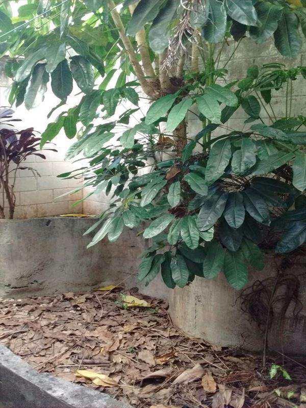 Sobrado em São Paulo, no bairro Jardim Santa Cruz (Sacomã)