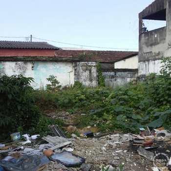 Terreno em Santos, bairro Castelo