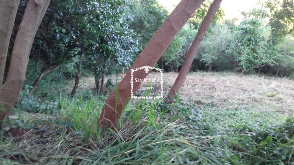 Terreno em Ilhabela, no bairro Norte