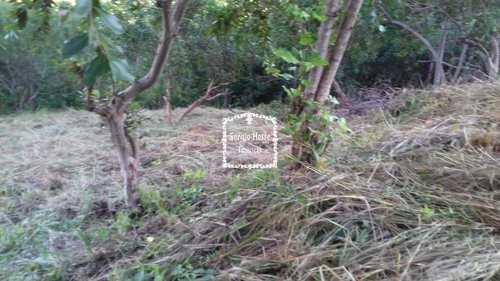 Terreno, código 648 em Ilhabela, bairro Norte