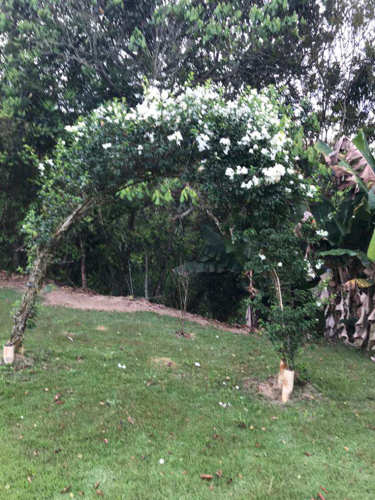 Chácara em Biritiba-Mirim, no bairro Capixinga