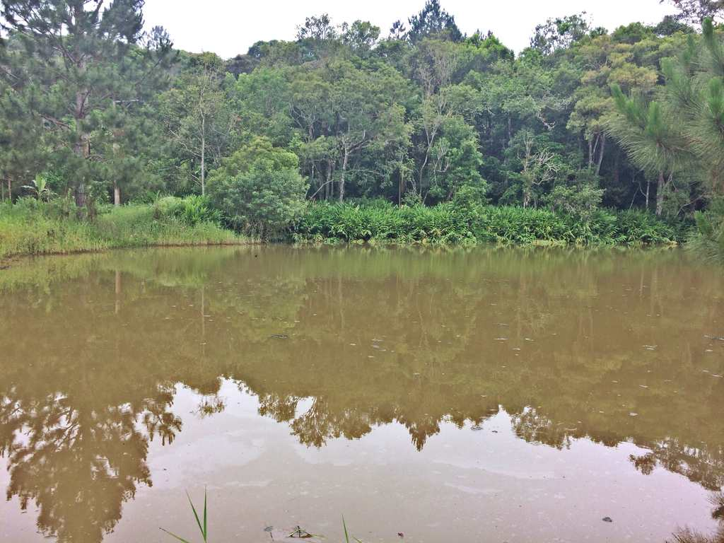 Sítio em Mogi das Cruzes, no bairro Biritiba Ussu