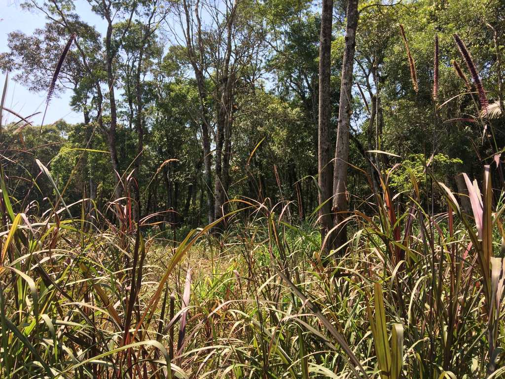 Terreno Rural em Biritiba-Mirim, no bairro Rural