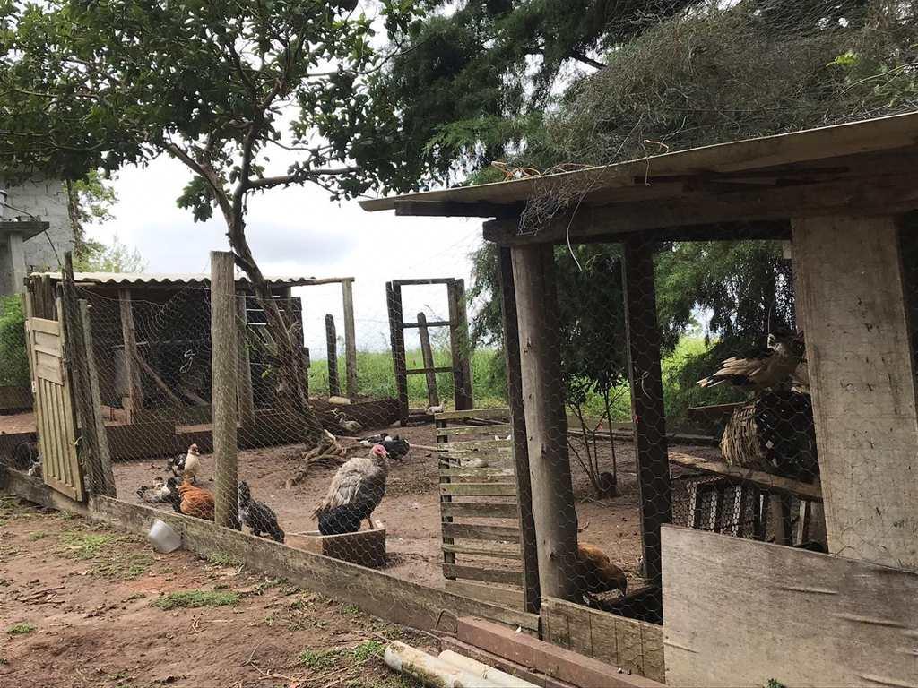 Sítio em Salesópolis, no bairro Bragança