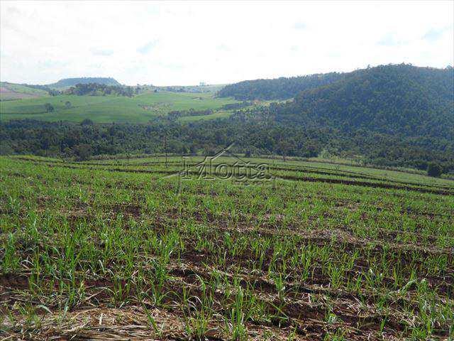 Sítio em Ribeirão Preto, no bairro Área Rural de Ribeirão Preto