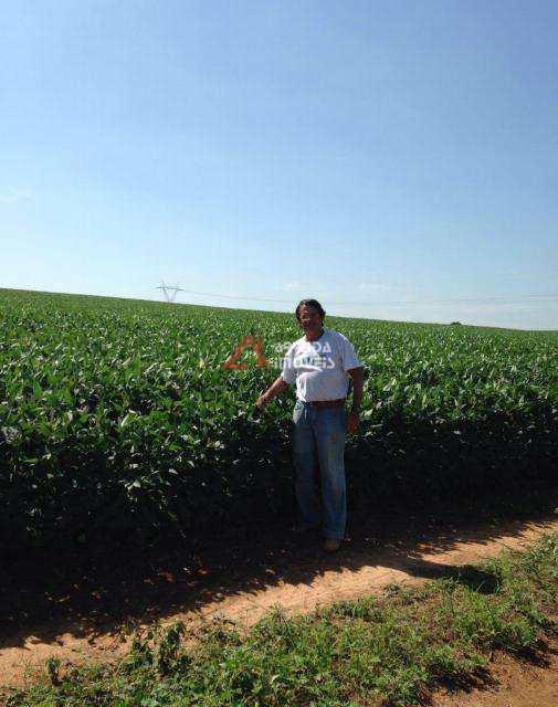 Fazenda em Campinas, no bairro Área Rural de Campinas