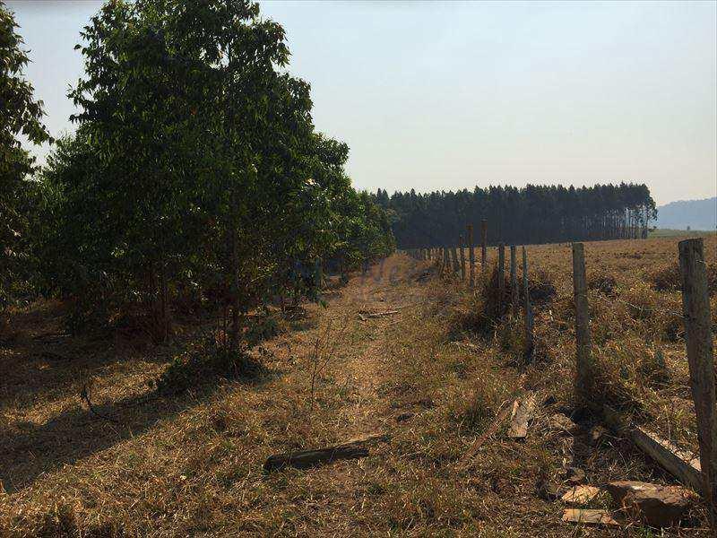 Sítio em Analândia, no bairro Zona Rural