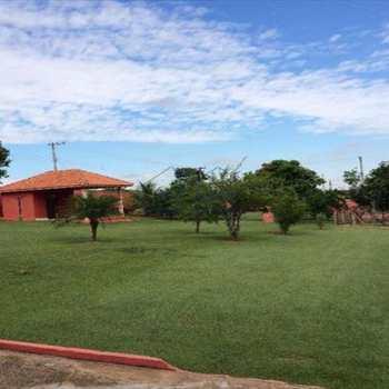 Haras em Limeira, bairro Área Rural de Limeira