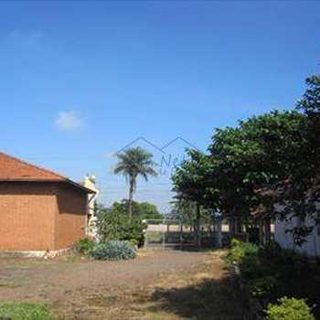 Galpão em Leme, bairro Jardim Capitólio