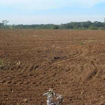 Sítio em Pirassununga, bairro Área Rural de Pirassununga