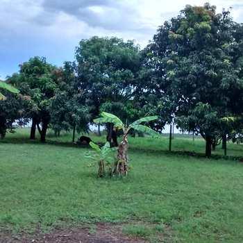 Chácara em Tambaú, bairro Zona Rural
