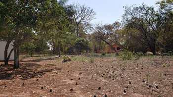 Terreno, código 10131725 em Pirassununga, bairro Vila Santa Fé