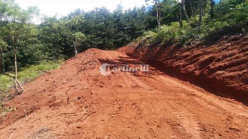 Terreno, código 537 em Santo Antônio do Pinhal, bairro Zona Rural