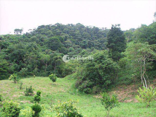 Sítio em Santo Antônio do Pinhal, no bairro Zona Rural