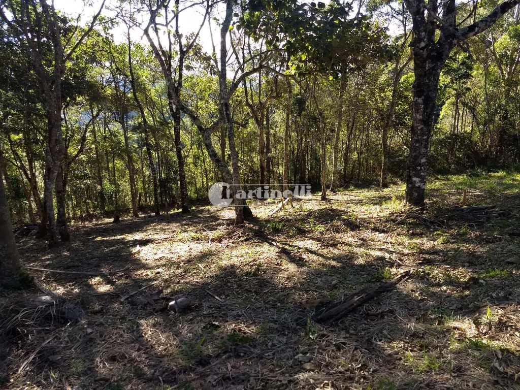 Terreno em Santo Antônio do Pinhal, no bairro Rural