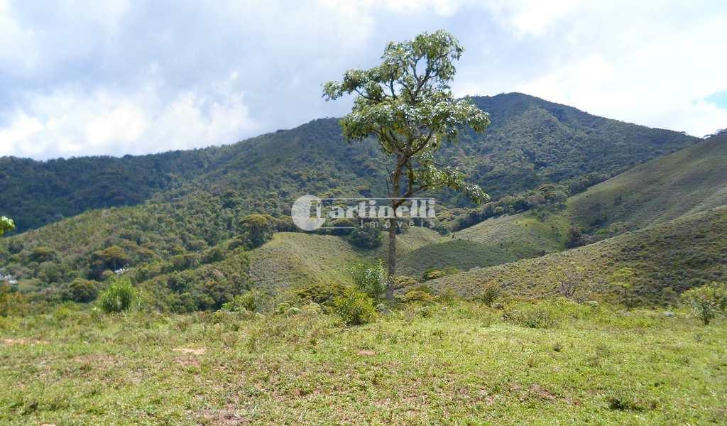 Área em Santo Antônio do Pinhal, bairro Rural