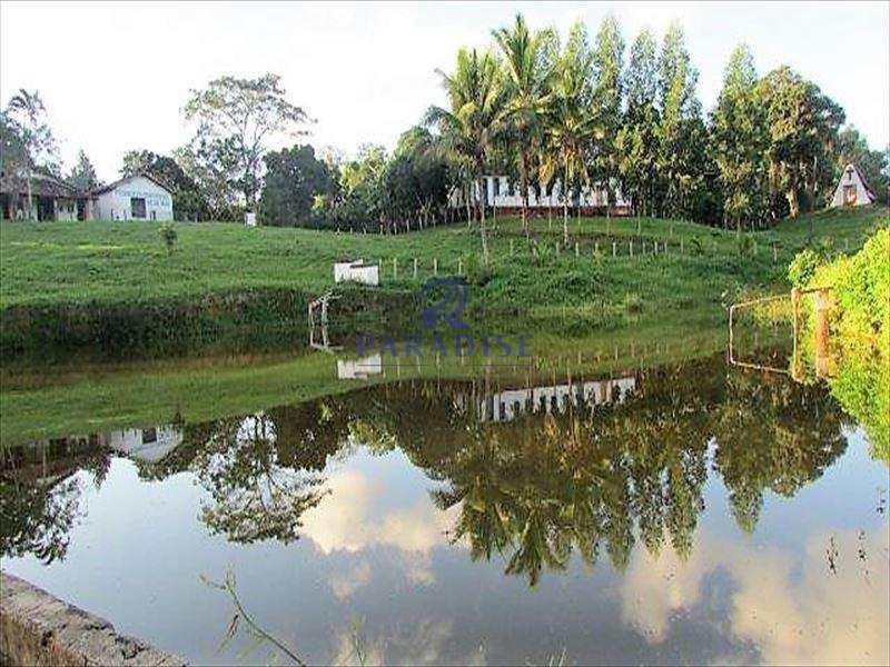 Fazenda em Itabuna, no bairro Área Rural de Itabuna
