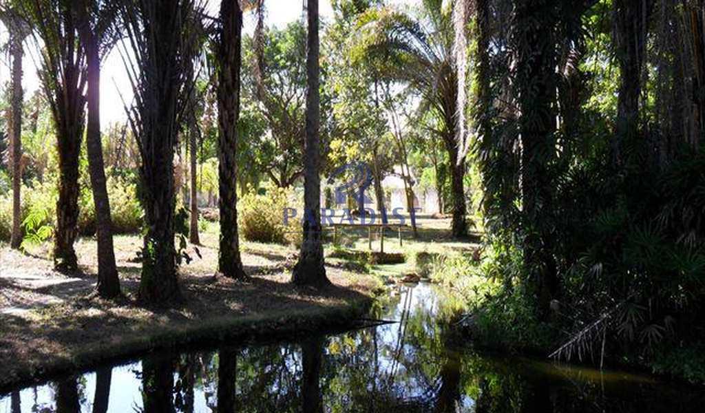 Área em Abrantes, bairro Abrantes