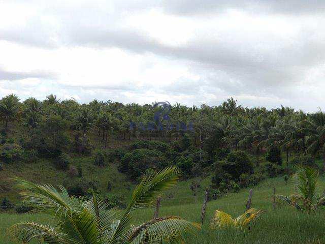 Terreno Rural em Camaçari, no bairro Arembepe