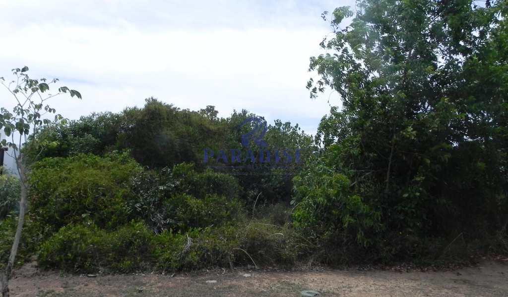 Terreno em Camaçari, bairro Itacimirim (Monte Gordo)
