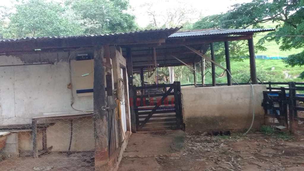 Sítio em Amparo, no bairro Chácara Brumado
