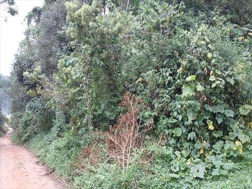 Terreno, código 778 em Itapecerica da Serra, bairro Itaquaciara