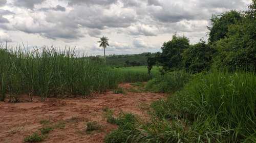 Sítio, código 2 em Barretos, bairro Área Rural de Barretos