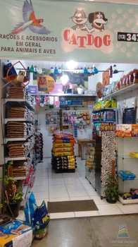 Petshop, código 6387 em Praia Grande, bairro Quietude