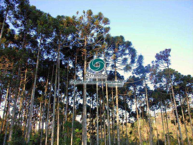 Terreno de Condomínio em Cotia, no bairro Chácara Ondas Verdes