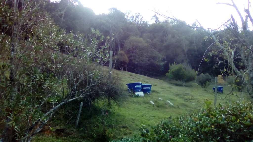 Chácara em Cunha, no bairro Vargem Grande