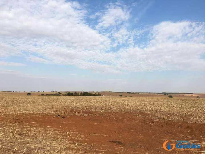 Fazenda em Piracanjuba, no bairro Zona Rural