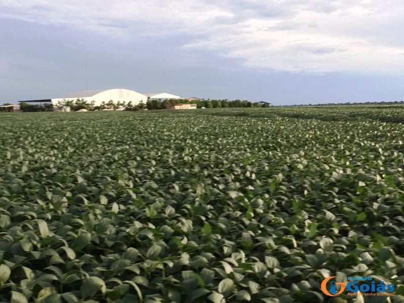 Fazenda em Tapurah, no bairro Ipiranga