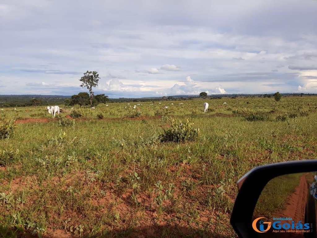 Fazenda em Cassilândia, bairro Area Rural